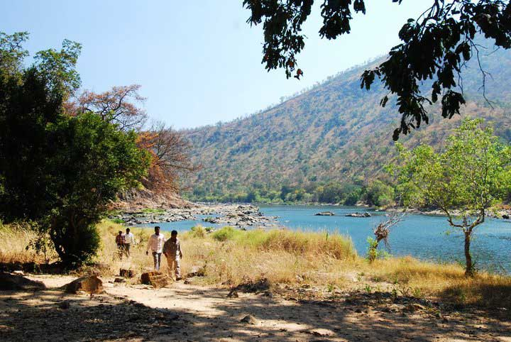 cauvery fishing camp jungle lodges karnataka